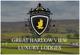 GREAT HARLOW GREAT HARLOW VIEW LUXURY LODGES